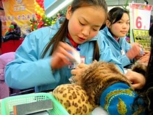 chinese_market_youth